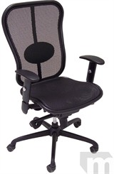 Elastic Mesh Synchro Ergonomic Chair