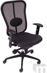 Elastic Mesh Synchro Ergonomic Chair