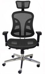 TrendFlex Elastic Mesh Ergonomic Chair w/Headrest