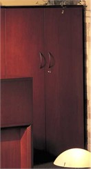 Wood Door Wall Cabinet