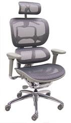 SpringFlex Mesh Ergonomic Office Chair